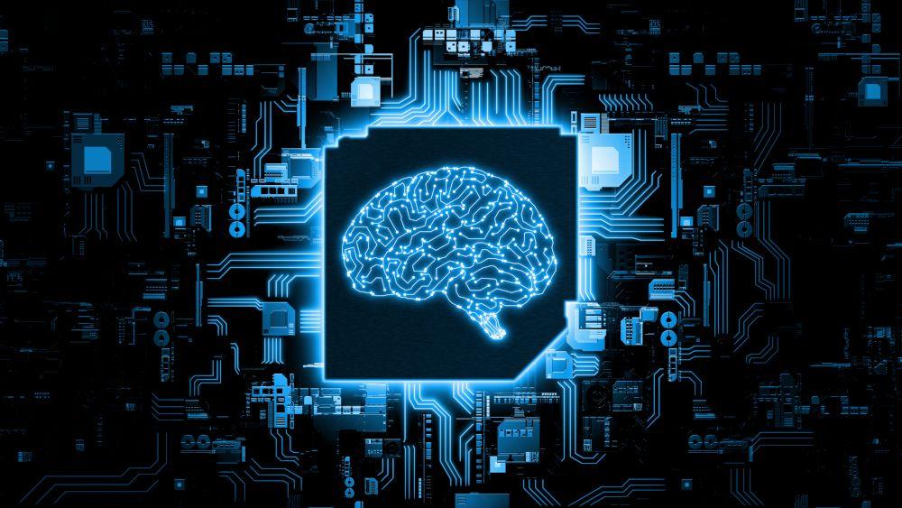 Algoritmi come cervelli